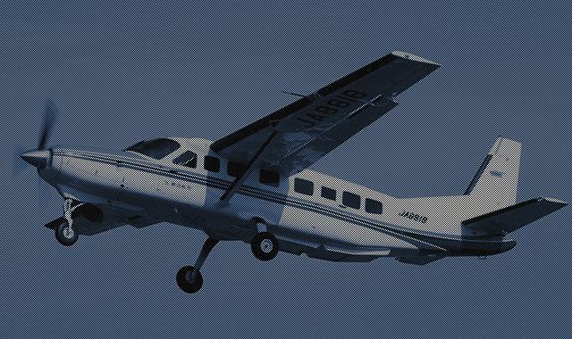 旅客・貨物飛行/測量・計測飛行/調査・視察飛行
